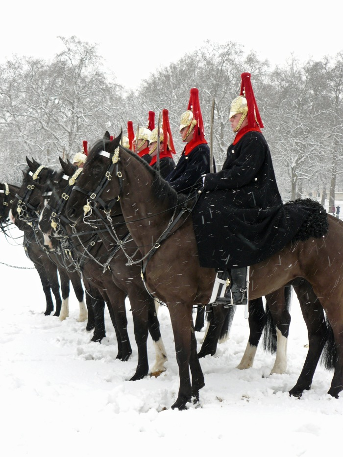 Horses and guards on a rare snowy day in London