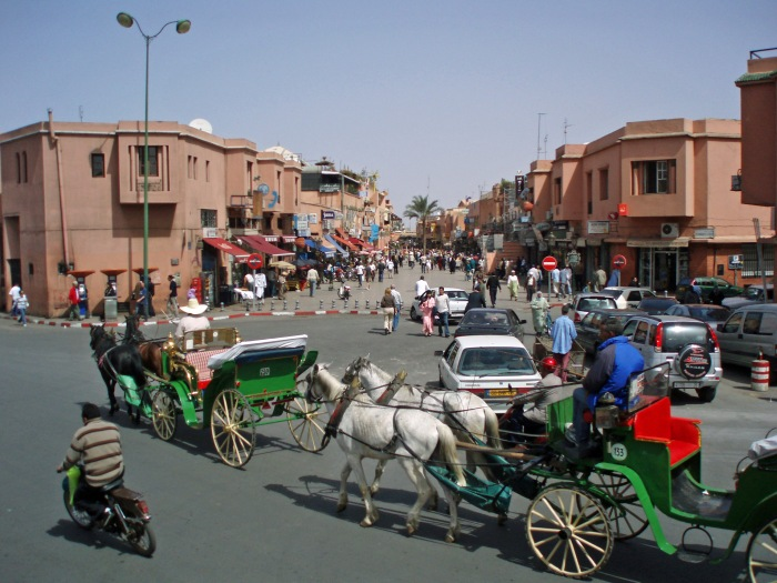 Two of Marrakech famous caleches