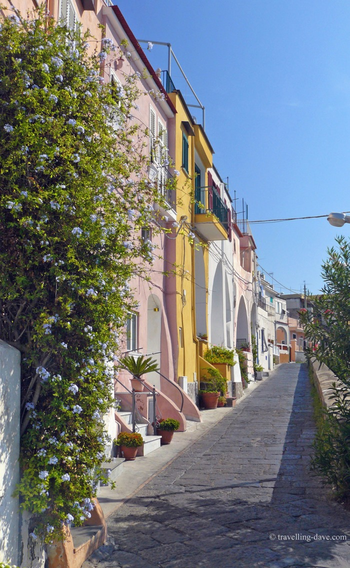 A row of houses in a village on Procida