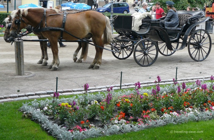 Esplanade Park horses and carriage
