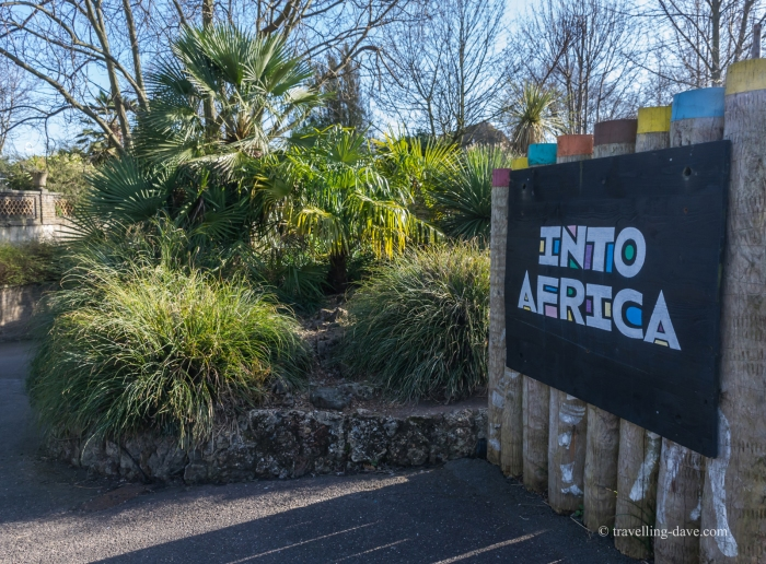 London Zoo Into Africa entrance