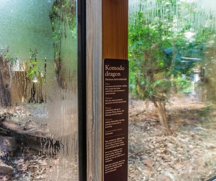 London Zoo Komodo Dragon enclosure