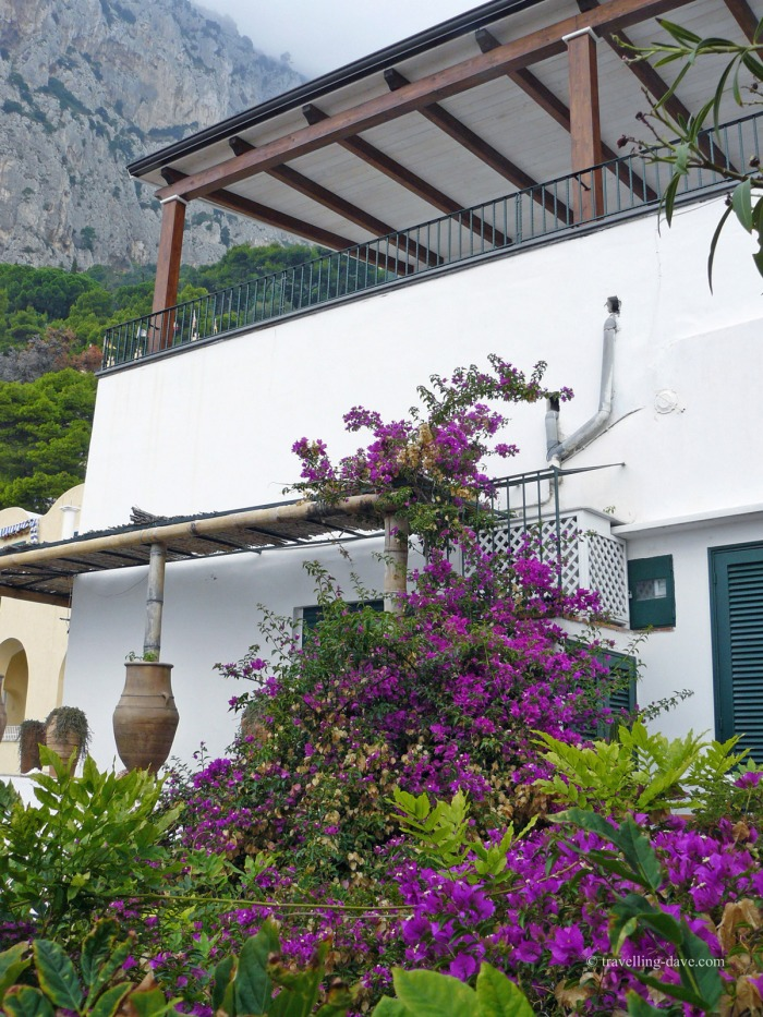 One of Capri's villas
