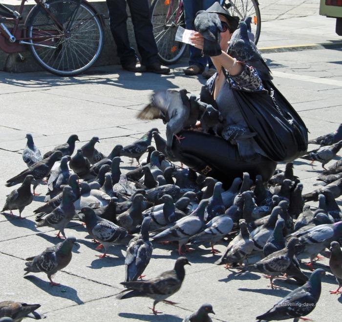 Feeding pigeons in Milan