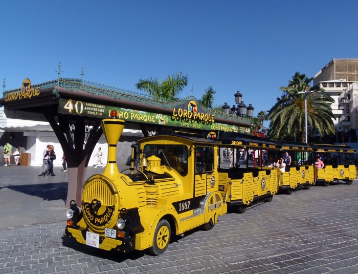 The yellow road train to Loro Parque
