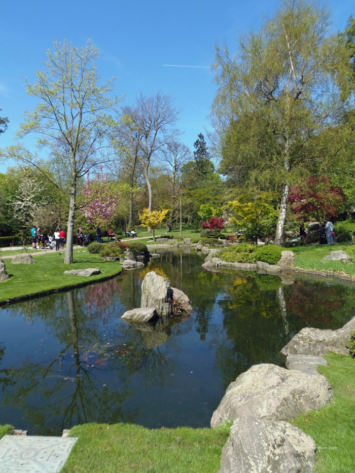 The pond at Holland Park Kyoto Garden