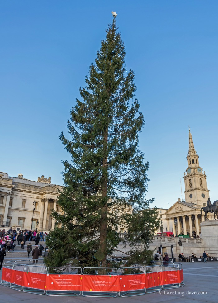View of Trafalgar Square Christmas Tree