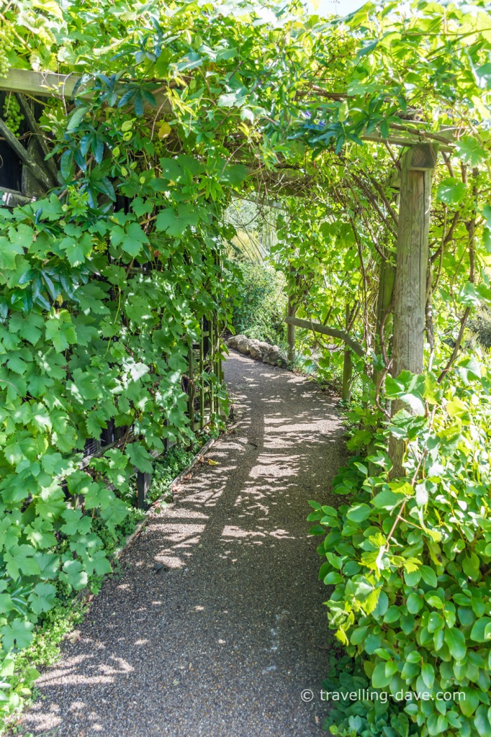 View of one of Lady Baillie Garden paths