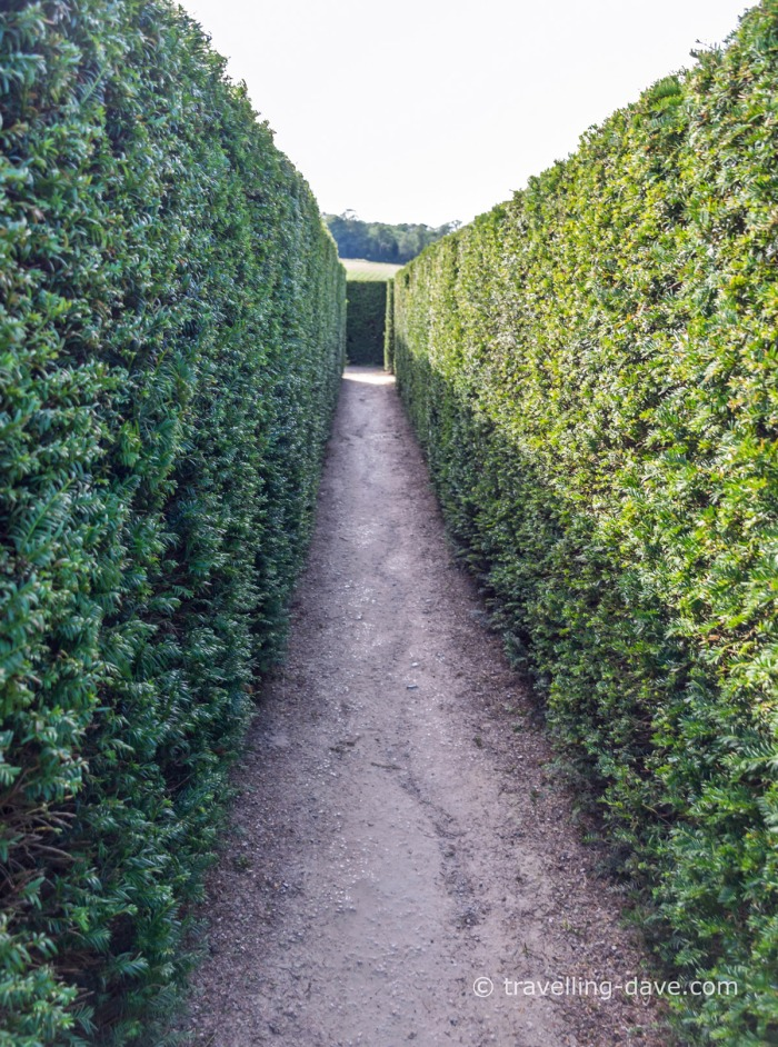Looking down the maze at Leeds Castle