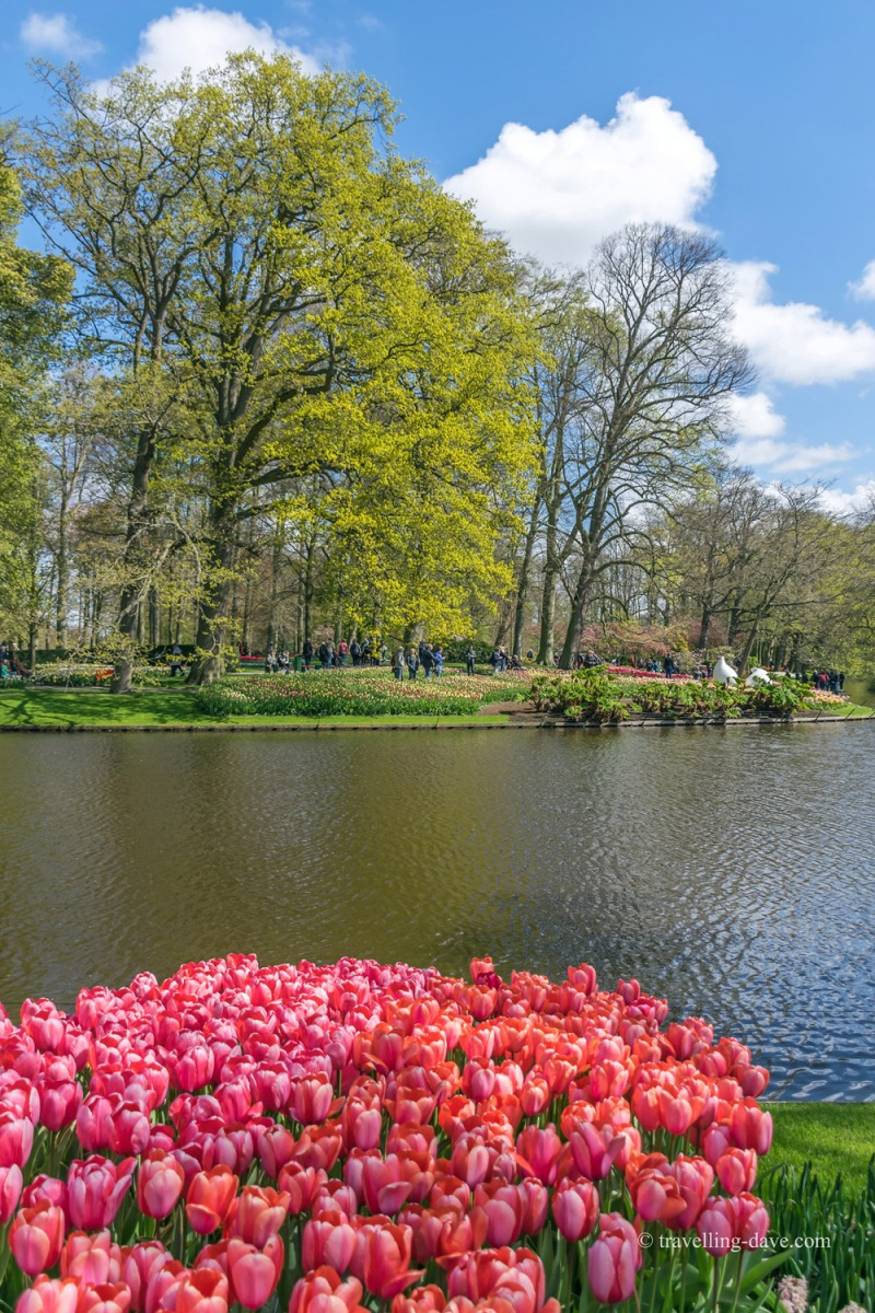 View of the small lake at Keukenhof