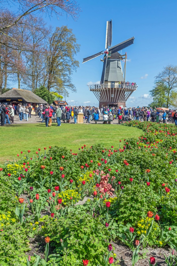 View of Keukenhof's windmill