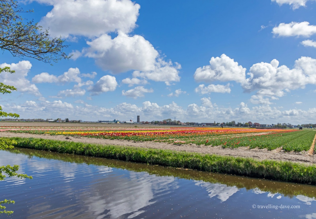 Clouds reflecting in the water at Holland's tulip fields