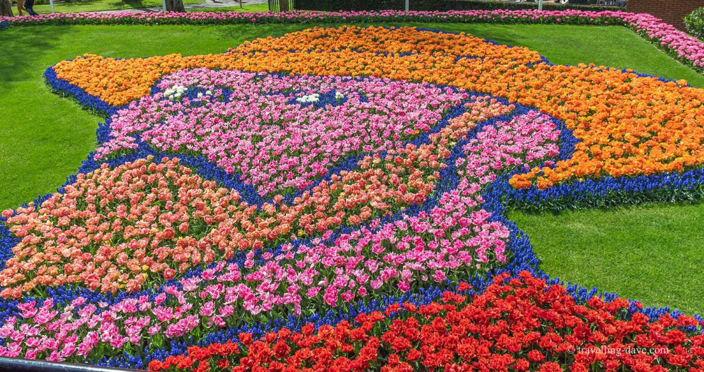 Vincent Van Gogh Flower Portrait, Keukenhof, Holland