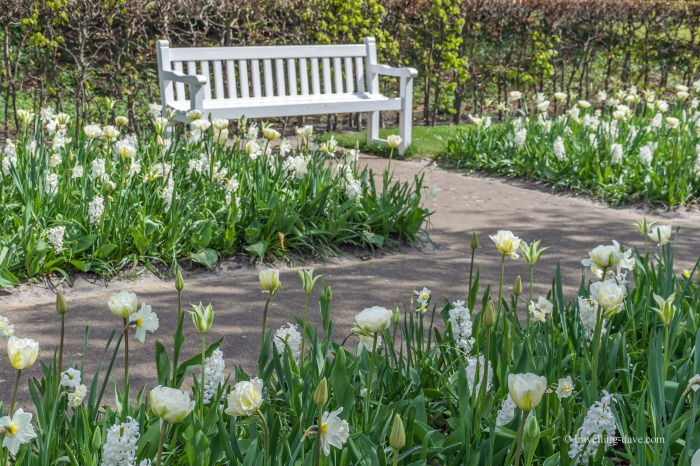 View of a quiet spot at Keukenhof