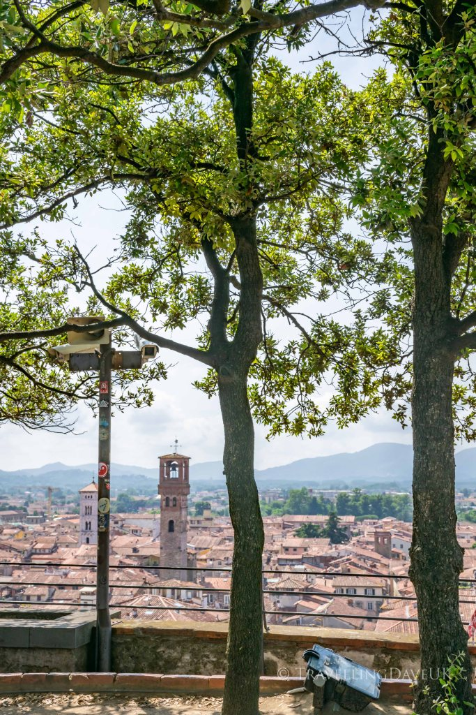 View from the top of Lucca Guinigi Tower in Italy