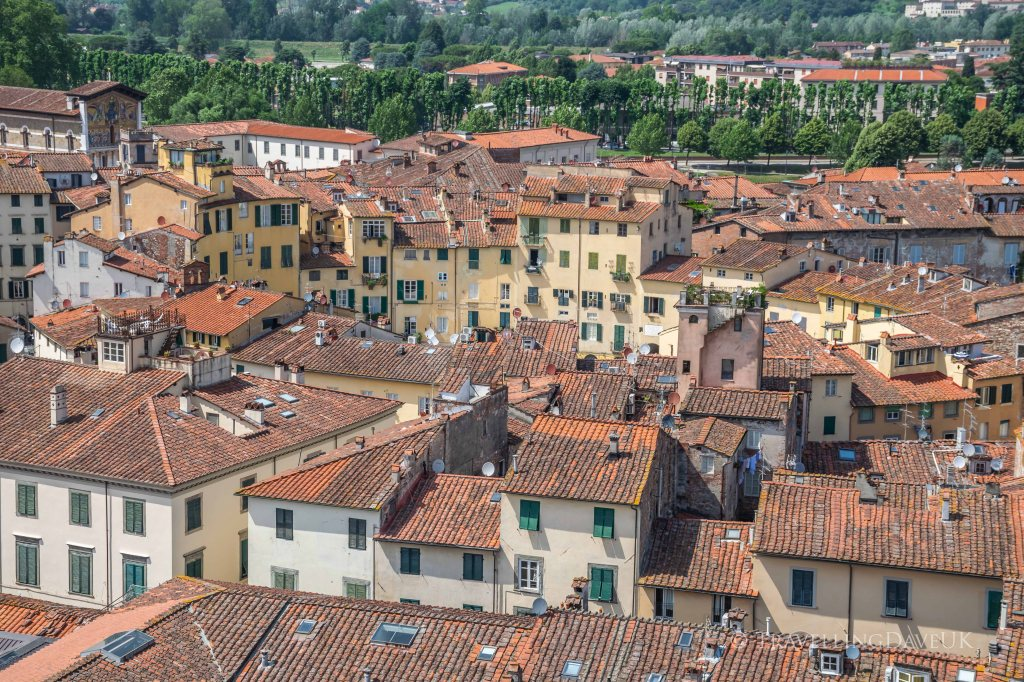 Aerial view of Lucca rooftops and Piazza Anfiteatro
